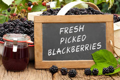 Slate blackboard with the words: Fresh Picked Blackberries Stock Photo