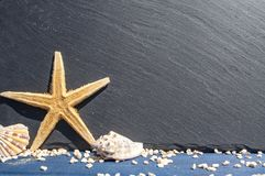 Slate chalkboard with starfisch and sea shells royalty free stock image