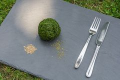 Satirical photos of a grass ball as food for vegans or vegetarians royalty free stock photography