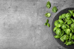 Slate plate and fresh basil leaves on table. Top view with space for text royalty free stock image