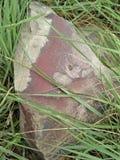 SlateÂ; roca metamórfica de grano fino, foliada; Foto de archivo