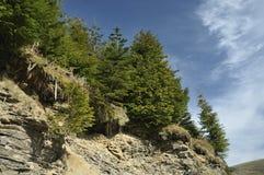 Slate Rock Falls Stock Image