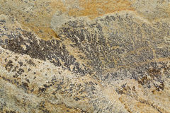 Slate rock texture. Flat, green, yellow and gray slate rock with abstract like landscape pattern Stock Image