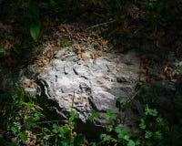 Slate rock Stock Image