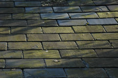 Slate Roof. Detail in shadows Stock Photo