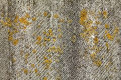 Slate on roof with pieces of moss,texture for background. Stock Photos