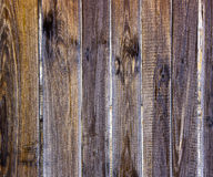 Weathered wooden fence slats Stock Images