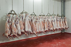 Slaughter house Stock Photo