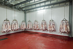 Slaughter house Royalty Free Stock Photo