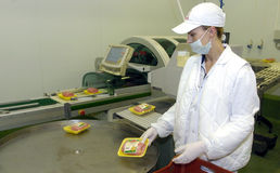 Slaughterhouse workers in the refrigerator. June 14, 2006 in a meat factory,Sofia, Bulgaria royalty free stock photography