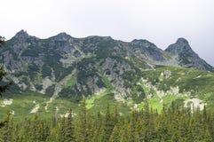 Slaveiu Ридж в национальном парке Retezat Стоковое Фото
