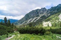 Slaveiu Ridge i den Retezat nationalparken Arkivfoton