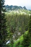 Slaveiu Ridge Royalty Free Stock Image
