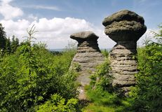 Slavenske mushrooms - rock formation in Broumovske steny mountains Royalty Free Stock Images
