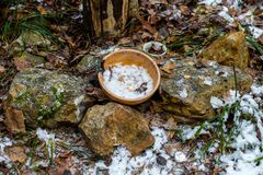 Slavic pagan temple in the forest. Ritual bowl on the stones. Russia - November 2015: Slavic pagan temple in the forest. Ritual bowl on the stones stock photos