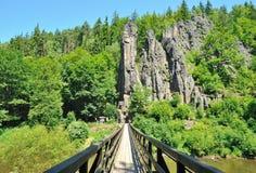 Slavkov Forest, Czech Republic Royalty Free Stock Photos