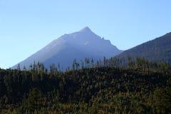 Slavkovsky osiąga szczyt, sosnowy las i niebieskie niebo, Wysoki Tatrzański, Sistani Zdjęcie Royalty Free