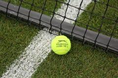 Slazenger Wimbledon Tennis Ball on grass tennis court Stock Image