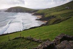 Slea Hoofdbaai en voorgebergte, Ierland Royalty-vrije Stock Afbeelding