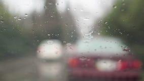 Slecht weer, regen stock videobeelden