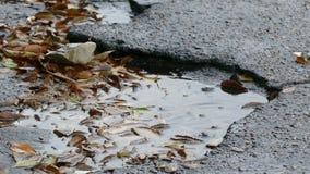 Slechte de regenkuilen van het asfalttarmac in een pool van het drijven stock footage