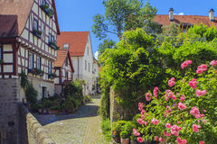 Slechte Wimpfen, Duitsland Stock Foto