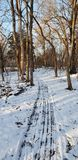 Sled cleared path stock images