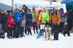 Sled Dog Race in Kharkiv, Ukraine Stock Image