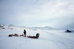 Sled, dog team and hunter. Ilulissat, Greenland Stock Photography