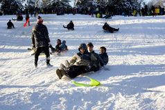 Sled riding in Central Park after snow storm Nemo Royalty Free Stock Photography