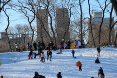 Sledding在中央公园 免版税库存照片