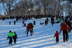 Sledding in Central Park Stock Image