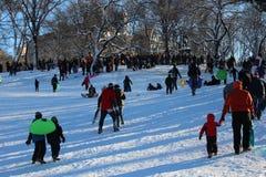 Sledding i Central Park Fotografering för Bildbyråer