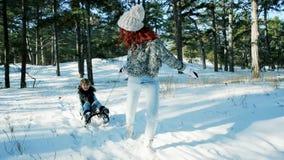 Sledding nella foresta, la mamma rotola suo figlio su una slitta, la famiglia felice nell'inverno, spettacolo di divertimento per stock footage