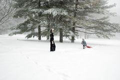 Sledding in the Park Stock Photography