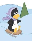 Sledding Penguin στην πορφύρα Στοκ εικόνα με δικαίωμα ελεύθερης χρήσης
