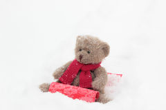 Sledding Teddy Bears Royalty Free Stock Photos