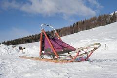 Sleddog的雪撬 库存图片