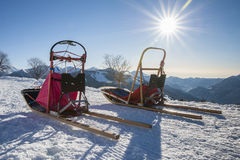 sleddog的雪撬 免版税库存图片