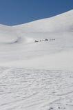 Sleddog种族在阿尔卑斯 白色&蓝色 免版税库存照片