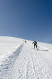 Sleddog in Alps. Up to mountain peaks Royalty Free Stock Photography