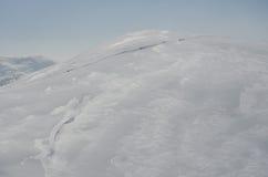 Sleddog in den Alpen Bis zu den Bergspitzen stockbild