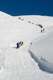 Sleddog race in Alps. All the time uphill Royalty Free Stock Image
