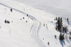 Sleddog race i Alps Nockberge-longtrail arkivfoton