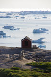Sledge dog and kennel, Ilulissat, Greenland Royalty Free Stock Photo