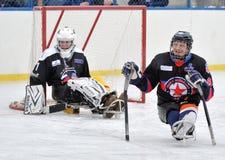 Sledge hockey goalkeeper and defender royalty free stock photos