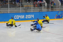Sledge hockey Royalty Free Stock Photos
