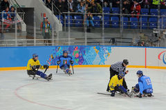 Sledge hockey Stock Image