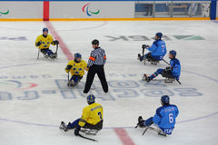 Sledge hockey Royalty Free Stock Photography