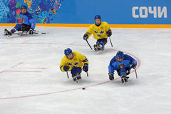 Sledge hockey Stock Photography